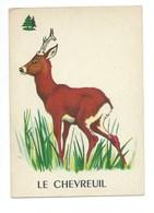 Le Chevreuil Chromo Image Carte à Jouer 105 X 73 Mm Bien 2 Scans - Vieux Papiers