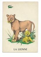 La Lionne Chromo Image Carte à Jouer 105 X 73 Mm Bien 2 Scans - Vieux Papiers