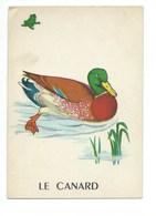 Le Canard Chromo Image Carte à Jouer 105 X 73 Mm Bien 2 Scans - Vieux Papiers
