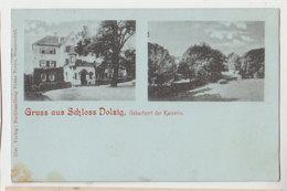 Cpa Gruss Aus Schloss Dolzig  1901 - Sommerfeld