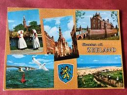Nederland. Pays-Bas. Holland. Zeeland ( Klederdracht Brug Meeuw ) - Kostums