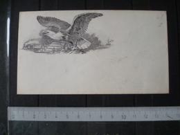 ENVELOPPE   AIGLE EAGLE TRAIN - United States