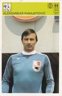 ALEKSANDAR PANAJOTOVIC CARD-SVIJET SPORTA (2) - Soccer