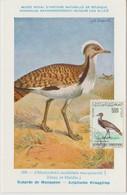 Tunisie Carte Maximum Oiseau 1965 Outarde PA 33 - Tunisia
