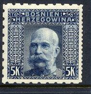 BOSNIA & HERZEGOVINA 1906 5 Kr. Perforated 6½:12½:6½:6½  LHM / *. Michel 44G, SG 201F - Bosnia And Herzegovina