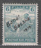 Hungary Banat Bacska 1919 Mi#9 Mint Hinged - Banat-Bacska