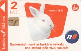 Latvia - Rabbit - Latvia