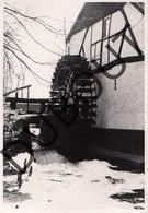 Opglabbeek Molen/Moulin Foto E133 - Opglabbeek
