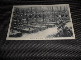 Becelaere  Beselare Zonnebeke Friedhof Moelenhoek - Holle Busch  Graben  Grab  Kerkhof   Cimetière - Zonnebeke