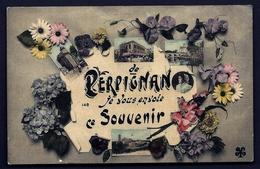 CPA ANCIENNE FRANCE- CARTE SOUVENIR DE PERPIGNAN- JE VOUS ENVOIE CE SOUVENIR-VUES MULTIPLES- CATALANE ET FLEURS - Gruss Aus.../ Grüsse Aus...