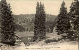 Lac Les Chavonnes - VD Waadt