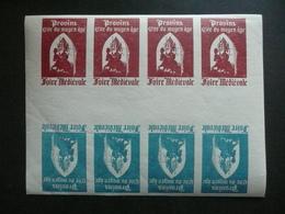 Vignette Provins Années 50 Bloc De 10 ND Bleu Et Rouge - Erinnophilie