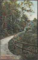 Bicycle Path Along Minnehaha Creek, Minneapolis, Minnesota, C.1905 - Hugh C Leighton U/B Postcard - Minneapolis