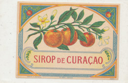 AN 348 -/ ETIQUETTE     SIROP DE  CURACAO - Unclassified