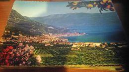 Cartolina: Salò Lago Di Garda Viaggiata (a31) - Non Classificati