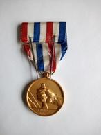 Médaille Du Travail Des Cheminots OR De 1950 - Firma's