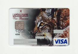 Lenta Bank RUSSIA Lunx VISA Expired - Geldkarten (Ablauf Min. 10 Jahre)