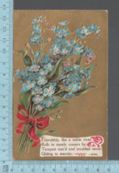 CPA -Floeur, Poeme -  Friendship, - Used In  1910 With USA Stamp - Fleurs