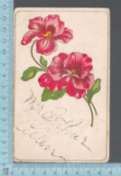 CPA -Signed Card , Flowers, With Diamond Dust Signature, Mr Arthur Allen  - Used In 1907 With USA Stamp - Fleurs