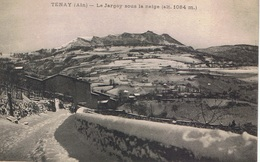 TENAY Le Jargoy Sous La Neige (alt. 1084 M) CPA - Zonder Classificatie