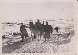 HOHEN NORDEN LIZAFRONT  FOTO DE PRESSE WW2 WWII WORLD WAR 2 WELTKRIEG Aleman Deutchland - Guerra, Militares