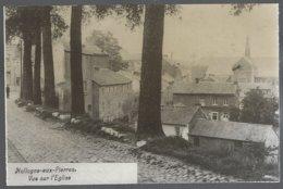 Reproduction Photo Carte Postale: Hollogne-aux-Pierres.vue De L'Eglise.dos Vierge Aspect Souillé - Grâce-Hollogne