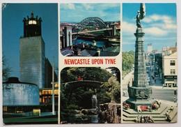 #383  Views Of Jesmond Dene - California US - Postcard - Other