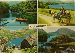 CPM Killarney, Multivues - Kerry