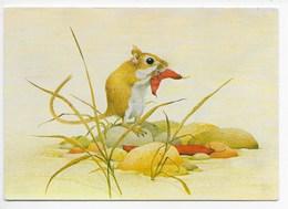 Modern Card - Gerbii Eating A Judas Tree Pod - Artist Kenneth Lilly - Animals