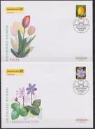 BRD FDC 2005 MiNr.2484 - 2485  Tulpe, Leberblümchen ( D 3942 ) - [7] República Federal