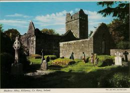 CPM Muckross Abbey, Killarney - Kerry