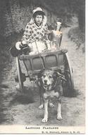 Attelage à Chien, Chariot De Chien, Laitières Flamande, Frau, Femme, Woman - Hunde