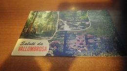 Cartolina:Saluti Da Vallombrosa Viaggiata (a31) - Non Classificati