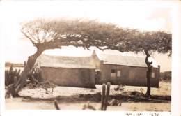 Aruba / Belle Oblitération - 09 - Aruba