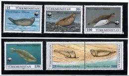 Turkmenistan. 1993 WWF-4v (Caspian Seals). 6v:15,50,100,150,25,500R.  Michel # 30-35 - Turkménistan