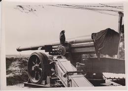 TARNNETZ  FOTO DE PRESSE WW2 WWII WORLD WAR 2 WELTKRIEG Aleman Deutchland - Guerra, Militares