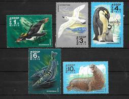 URSS: 1978 Faune Antarctique - 1923-1991 URSS