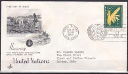 UN/New York/1954 - Food & Agriculture Organization - 3 C - FDC - New-York - Siège De L'ONU