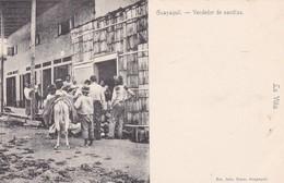 GUAYAQUIL. VENDEDOR DE SANDIAS. LA VILLA. FOTO JULIO TIMM. ESCENA TIPICA. ECUADOR. CIRCA 1900s-UNIQUE-DE LUXE ETAT-BLEUP - Equateur