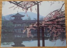 KYOTO Japan - Heian Shrine - Temple Vg - Kyoto