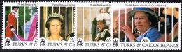 Turks & Caicos Islands 1991 Queens Birthday Unmounted Mint. - Turks And Caicos