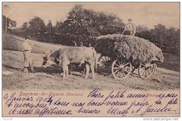 65) BAGNERES DE BIGORRE - HAUTES PYRENEES - UN ATTELAGE - BOEUF - FENAISON - AGRICULTURE -2 SCANS) - Bagneres De Bigorre