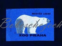 84-148 CZECHOSLOVAKIA 1963 ZOO Praha Ursus Maritimus Polar Bear Oso Polar Oso Blanco Ours Blanc - Boites D'allumettes - Etiquettes