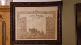 DIPLOME COMICE AGRICOLE DE L'ARRONDISSEMENT DE SOISSONS FETE DE BRAINE 18 JUIN 1950  ENCADRE 60 X 50 CM EXCELLENT ETAT - Diploma & School Reports