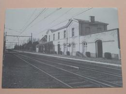 W.S.V. Buitenbeentjes STATION LANDEGEM ( Foto De Pauw A. ) Anno 19?? ( Zie / Voir Photo ) ! - Nevele