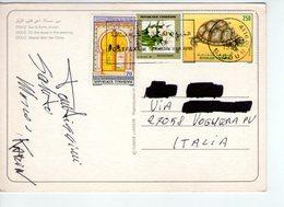 U3953 NICE STAMP AND TIMBRE 1992 On Postcard DOUZ, SUR LA DONUE, LE SOIR _ Ed Tunisie Lumiere _ Storia Postale - Tunisia