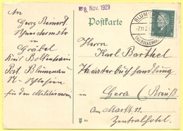 Deutsches Reich - 1929 - 8 - Postkarte - Viaggiata Da Blumenau Per Gera - Brieven En Documenten