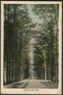 De Steeg - Middachter-allee 1923 - Nederland