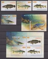 Tajikistan 24.04.2000 Mi # 167-70 Bl 19-20, Fishes, MNH OG - Tadjikistan