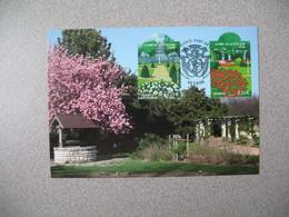 Carte-Maximum 2007 - N° 4047 - 4048 - Maximum Cards